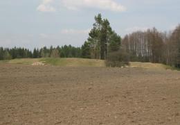 Hillfort in Trzcianka