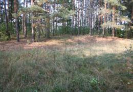 Hillfort in Ostrykół